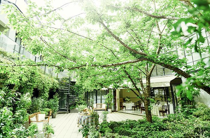 六本木駅から徒歩2分。緑と自然光が溢れる空間でふたりらしく自由に過ごす1日を