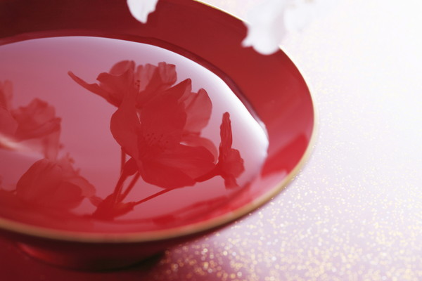 水面に桜が映る杯
